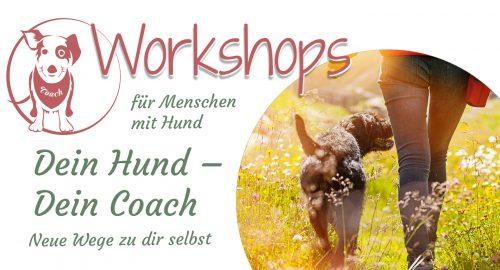Seminar Dein Hund Dein Coach